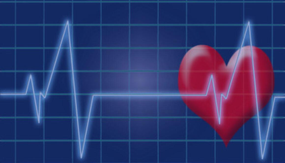 heartbeat pulse heart ecg electrocardiogram