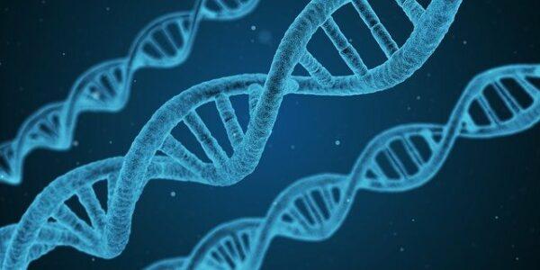Blue DNA replica